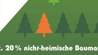 Max. 20% nicht-heimische Baumarten